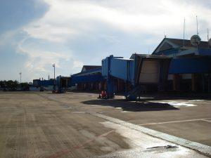 Aeropuerto Internacional Gustavo Rojas Pinilla (plataforma)