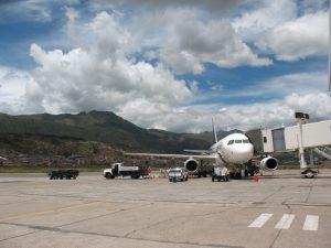 Manga del terminal aéreo