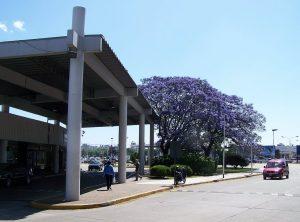 Parte fachada del aeropuerto