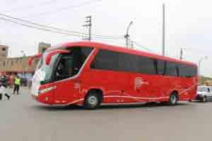 Los buses lo trasladarán desde el Aeropuerto Internacional Jorge Chávez hasta su destino.