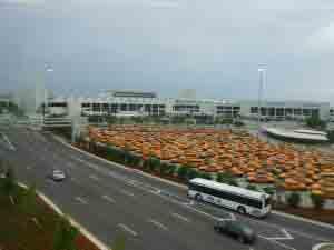 Taxis y autobuses de conexión del aeropuerto de Miami.