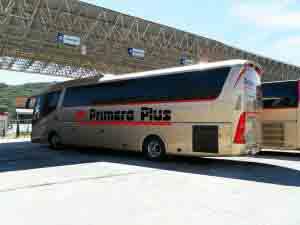 Autobuses de la empresa Primera Plus.