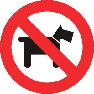 Se prohíbe el ingreso de cualquier animal, excepto los perros guía